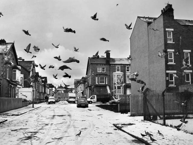 Exhibition: Streets in the Sky